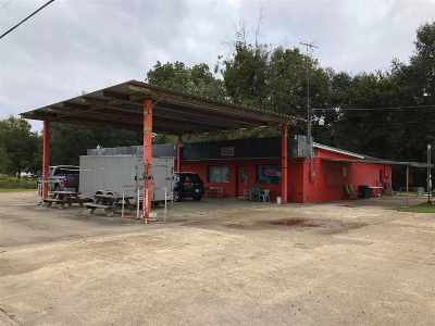 Vidalia Commercial For Sale: 5782 W Highway 84