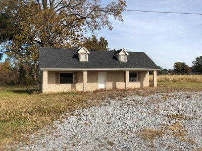 Vidalia Commercial For Sale: 1215 Carter Street