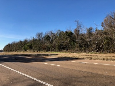 Adams County Commercial Lots & Land For Sale: 735 Highway 61 N