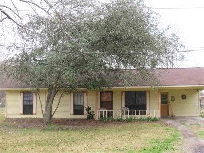 Vidalia Single Family Home For Sale: 257 Ron Road