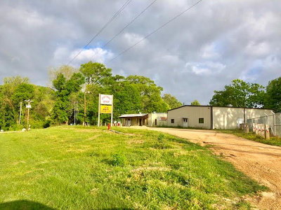Wilkinson County Commercial For Sale: 14994 Hwy 24 Wet