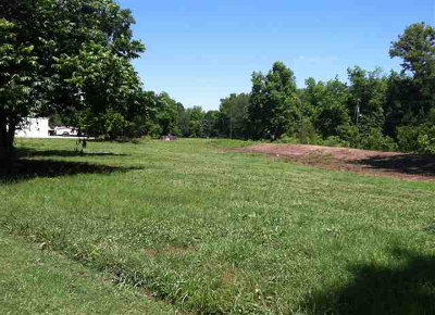Concordia Parish Commercial Lots & Land For Sale: Lot D Carter Street/Murray Drive