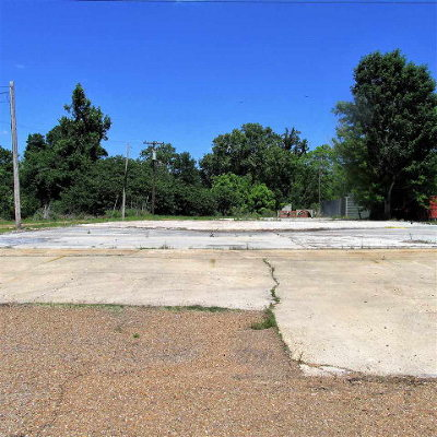 Commercial Lots & Land For Sale: 279 John R. Junkin Drive