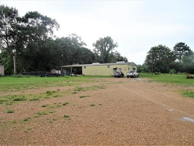 Natchez Commercial For Sale: 331 Devereaux Drive