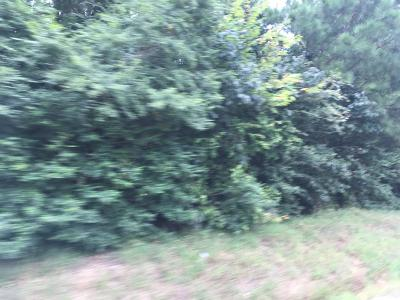 Water Valley MS Residential Lots & Land For Sale: $45,900