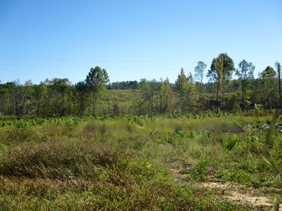 Water Valley Residential Lots & Land For Sale: Tbd Cr 551/Cr 175