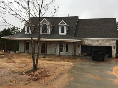 Single Family Home For Sale: 902 Horseshoe Lake