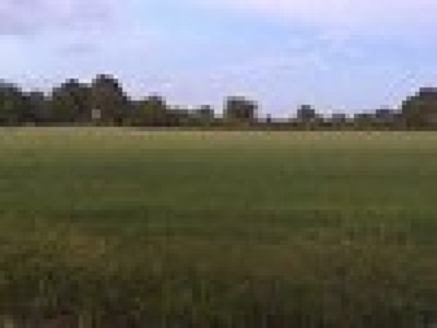 Water Valley Residential Lots & Land For Sale: Lot #1 Champion Circle