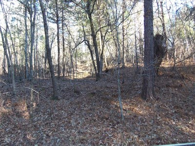 Oxford Residential Lots & Land For Sale: Tbd Cr 223