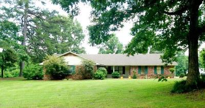 Water Valley MS Single Family Home For Sale: $175,000