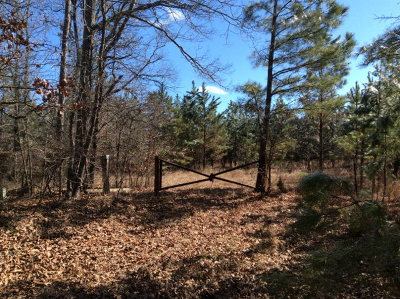 Lafayette County Residential Lots & Land For Sale: Cr 343