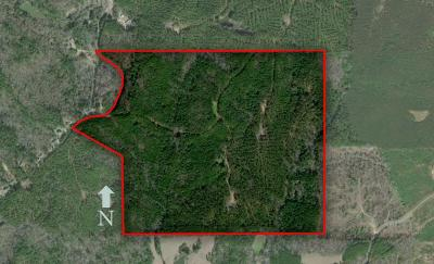Water Valley Residential Lots & Land For Sale: Cr 25