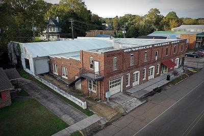 Water Valley Commercial For Sale: 102 South Main St