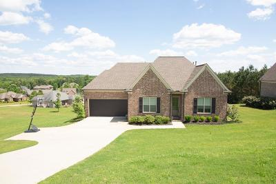 Oxford Single Family Home For Sale: 523 Rock Springs Drive