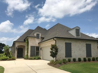 Oxford Single Family Home For Sale: 104 Waterstone Drive