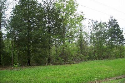 Residential Lots & Land For Sale: Road 452