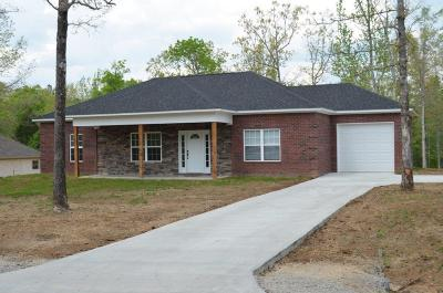 Single Family Home For Sale: 294 County Road 1390