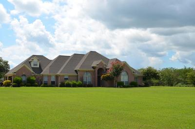 Lee County Single Family Home For Sale: 1097 Rd 503