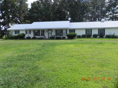 Single Family Home For Sale: 1010 County Line Road