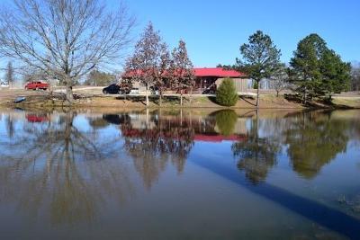Marshall County, Benton County, Tippah County, Alcorn County, Prentiss County, Tishomingo County Single Family Home For Sale: 91 County Road 761