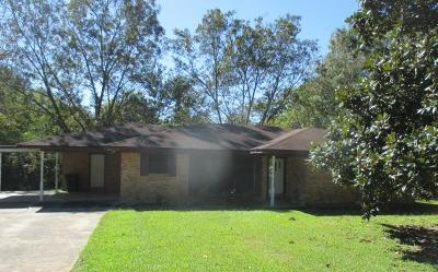 Lee County Single Family Home For Sale: 151 Anthony St.