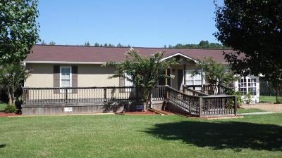 Single Family Home For Sale: 50081 Sink Road