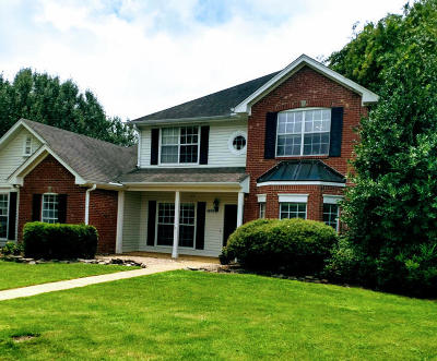 Single Family Home For Sale: 1675 Woodside County Road .