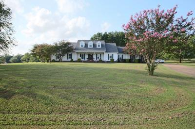 Marshall County, Benton County, Tippah County, Alcorn County, Prentiss County, Tishomingo County Single Family Home For Sale: 2900 Scenic Lake Dr.