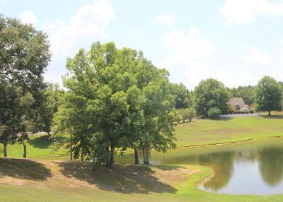 Marshall County, Benton County, Tippah County, Alcorn County, Prentiss County, Tishomingo County Single Family Home For Sale: 1907 S Lake St.