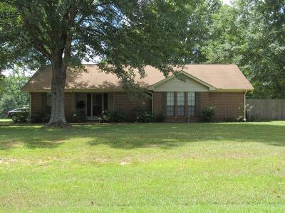 Single Family Home For Sale: 211 Kids Cv.