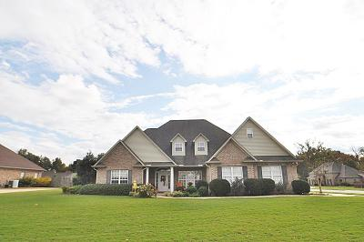 Single Family Home For Sale: 107 Valley Vista Dr.
