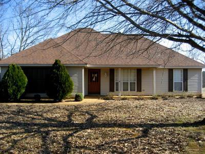 Marshall County, Benton County, Tippah County, Alcorn County, Prentiss County, Tishomingo County Single Family Home For Sale: 3800 County Road 540
