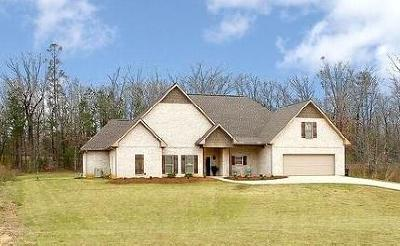 Lee County Single Family Home For Sale: 193 County Road Ossridge County Road .