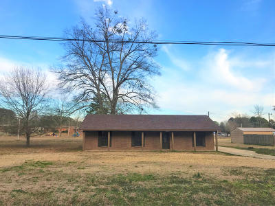 Single Family Home For Sale: 222 Museum Dr.