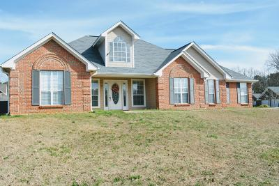 Single Family Home For Sale: 197 Megs Ln.