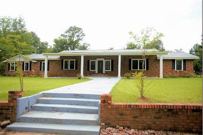 Single Family Home For Sale: 704 N Cummings St.