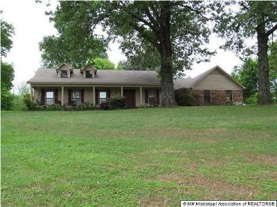 Byhalia, Hernando, Horn Lake, Olive Branch, Southaven, Walls, Holly Springs, Potts Camp Single Family Home For Sale: 645 Church Road