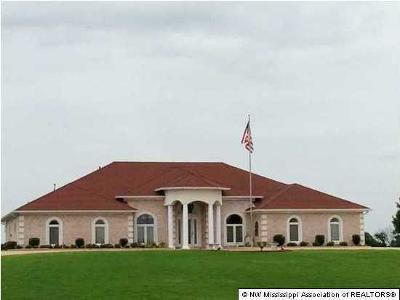 Desoto County Single Family Home For Sale: 4344 Skyline Drive