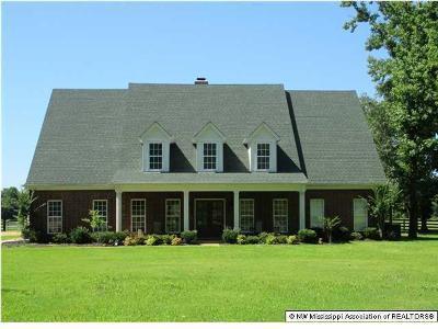 Byhalia, Hernando, Horn Lake, Olive Branch, Southaven, Walls, Holly Springs, Potts Camp Single Family Home For Sale: 236 Addison Lane