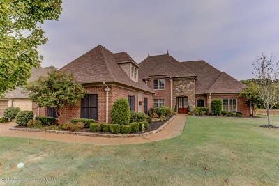 Olive Branch Single Family Home For Sale: 6458 Cody Cove