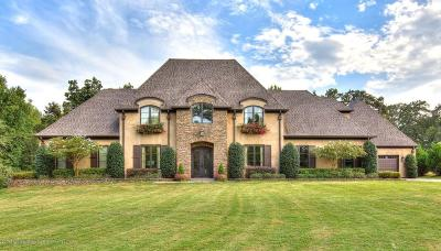 Byhalia, Hernando, Horn Lake, Olive Branch, Southaven, Walls, Holly Springs, Potts Camp Single Family Home For Sale: 2189 Bright Road