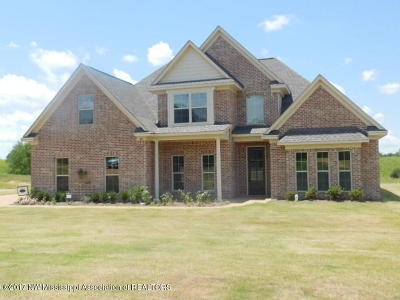 Tate County Single Family Home For Sale: 201 Eagle View Drive