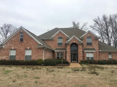 Southaven Single Family Home For Sale: 2278 College