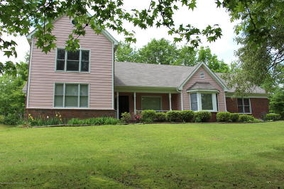Marshall County Single Family Home For Sale: 205 Parker