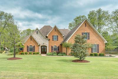Desoto County Single Family Home For Sale: 8925 Dehart Drive