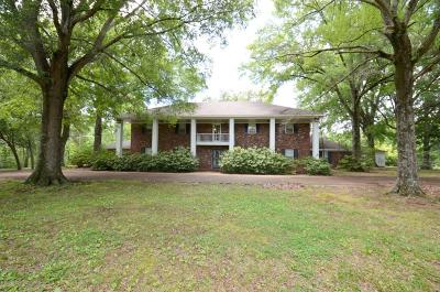 Desoto County Single Family Home For Sale: 4251 Byhalia Road