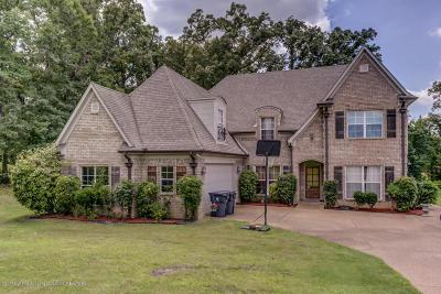 Hernando Single Family Home For Sale: 1989 Jaybird Road