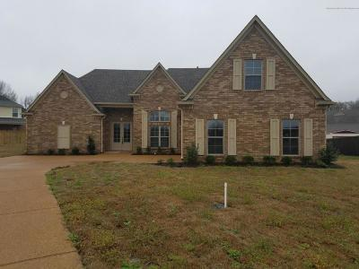 Southaven Single Family Home Active/Contingent: 387 Landon Cove Drive