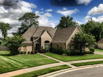 Desoto County Single Family Home For Sale: 4038 Kayley Lane