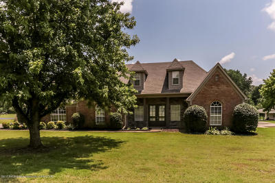 Southaven Single Family Home For Sale: 3935 E Nail Road